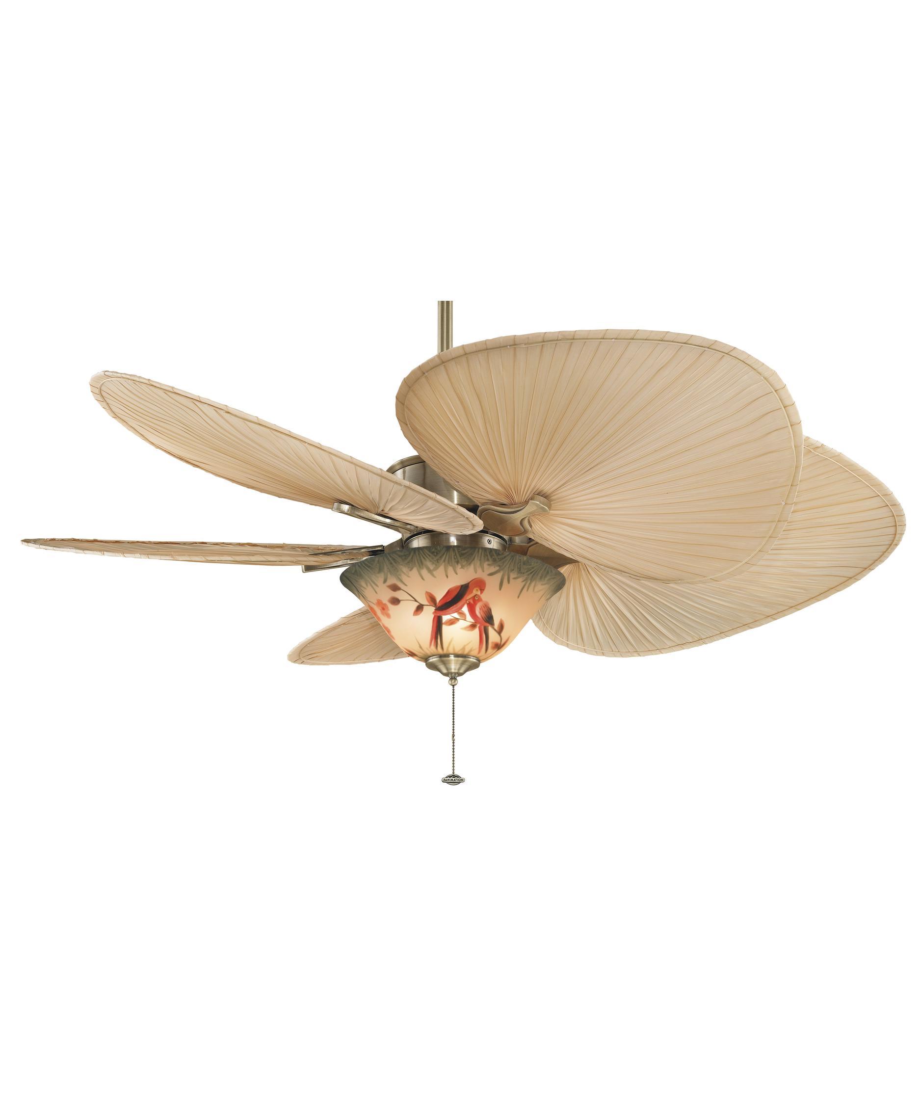 fanimation mad3250 islander 52 inch 5 blade ceiling fan | capitol