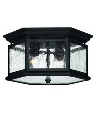 Hinkley Lighting Edgewater 2 Light Outdoor Flush Mount