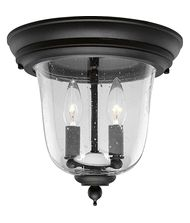 Progress Lighting P5562 Ashmore 2 Light Outdoor Flush Mount