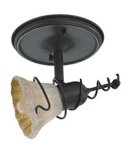 Sea Gull Lighting 94882 Ambiance Transitions 6 Inch Indoor Spotlight